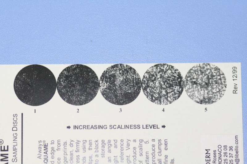 Echelle de scorage des Dsquames (Monaderm)