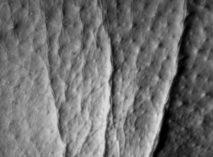 Image rides de la pâte d'oie